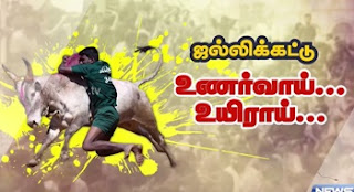 Issues faced by Jallikattu protesters at Madurai : reporter update | News 7 Tamil