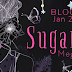 Blog Tour - Playlist & Giveaway - Sugar Lump by Megan Gaudino