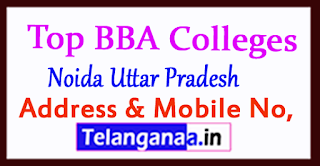 Top BBA Colleges in Noida Uttar Pradesh
