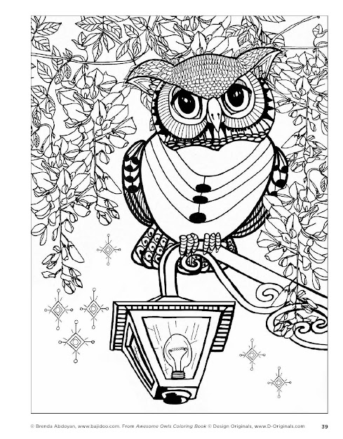 Owl  Awesome Owls Coloring Book