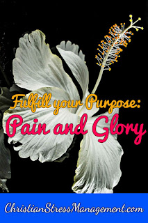 Fulfilling your purpose: the pain and the glory