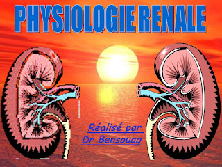 PHYSIOLOGIE RENALE.pdf