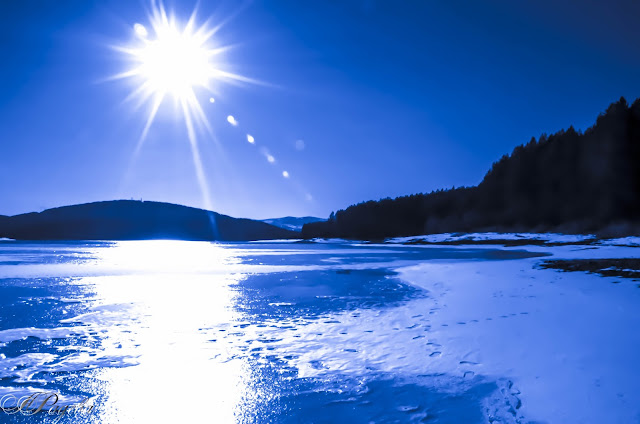 Язовир Студена, Studena lake