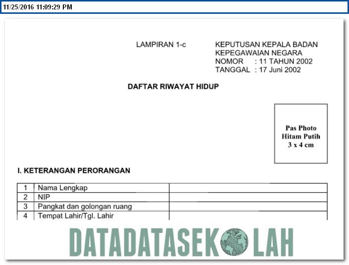 Download Formulir Daftar Riwayat Hidup Pns Cpns Format Word Dari Bkn