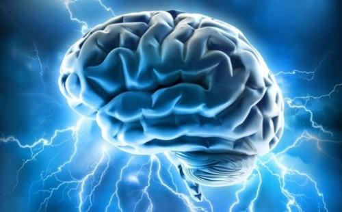 図:けいれん発作の脳