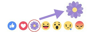 Why Did Facebook Remove the Thankful Reaction Button? See Why.