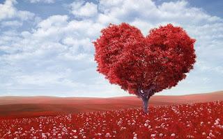 Love-status-image-for-whatsapp