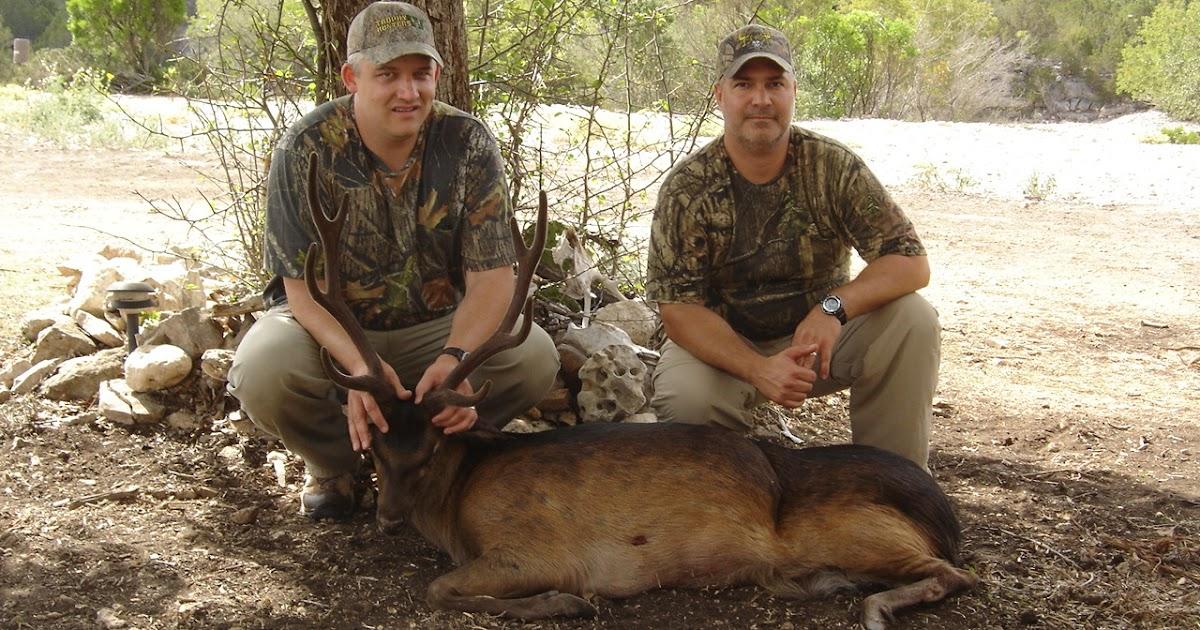 Exotic Hunt In Texas 82