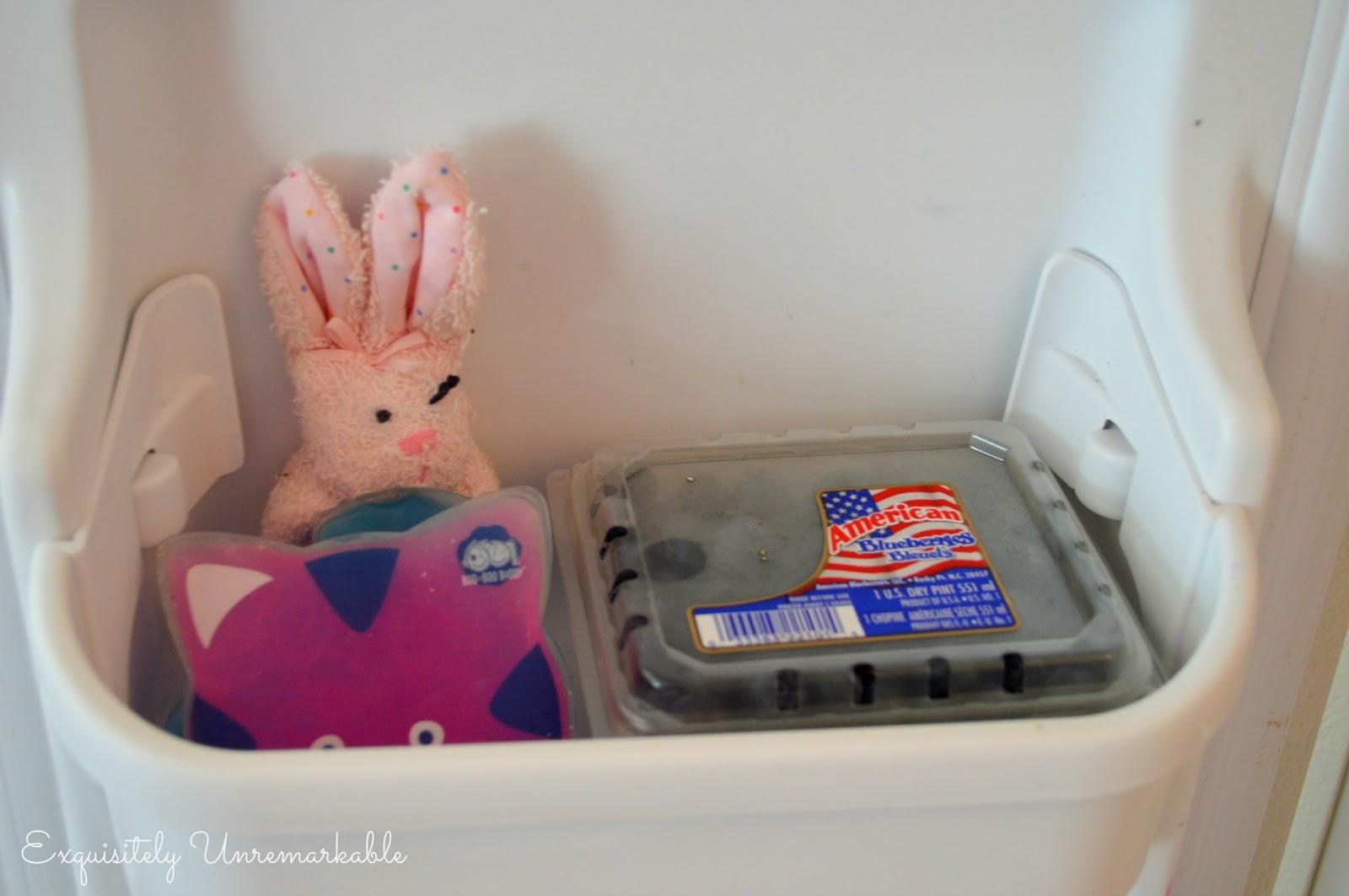 Frozen blueberries and boo boo ice packs on the freezer door