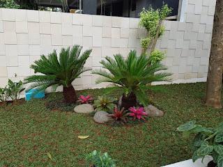 Jasa Pembuatan Taman di Cilandak,Jasa Tukang Taman di Cilandak,Tukang Taman Murah di Cilandak