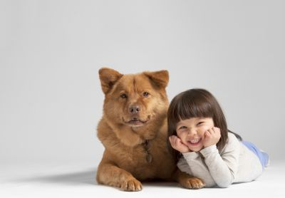 Prescence Of Human Friends And Pet Dogs
