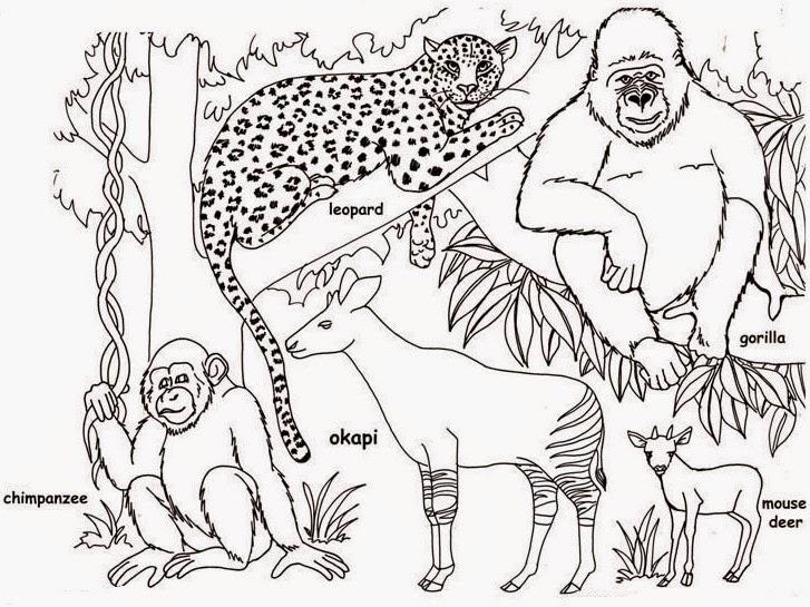 Terpopuler 25 Cara Menggambar Pemandangan Kebun Binatang