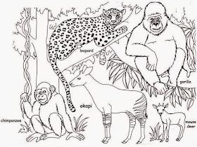 42 Gambar Mewarnai Pemandangan Kebun Binatang Terkini Lingkar Png