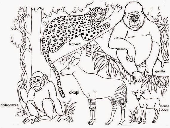 Download gratis Gambar Kebun Binatang Untuk Mewarnai