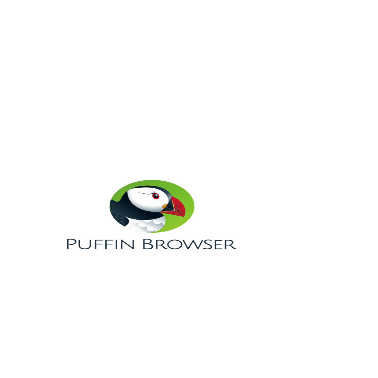 What is puffin browser - Technotech11