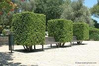 Ramat Hanadiv, Memorial Gardens