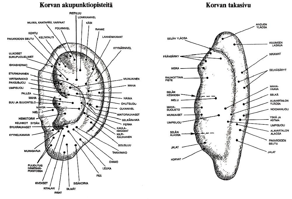 Akupunktio Pisteet