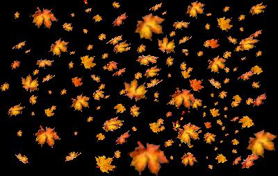 fall leaves autumn season png image