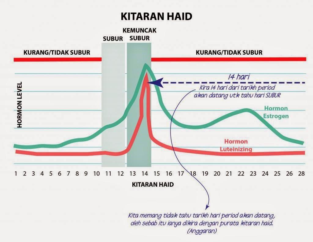 KITARAN HAID SUBUR