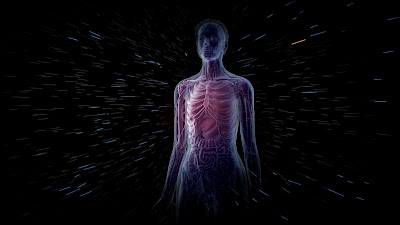 THE UNKNOWN FACTS OF HUMAN BODY
