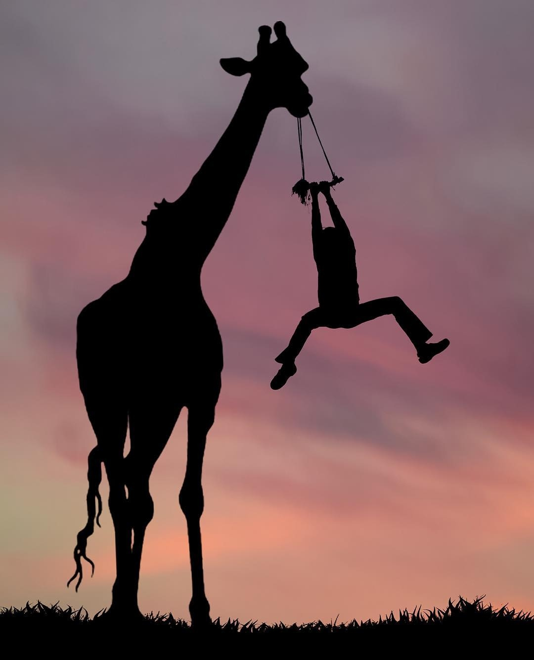 12-Giraffe-Swing-Dominic-Liam-Beautifully-Manipulated-Pictures-at-Sunrise-www-designstack-co
