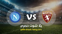 موعد مباراة نابولي وتورينو اليوم الاحد بتاريخ 06-10-2019 في الدوري الايطالي