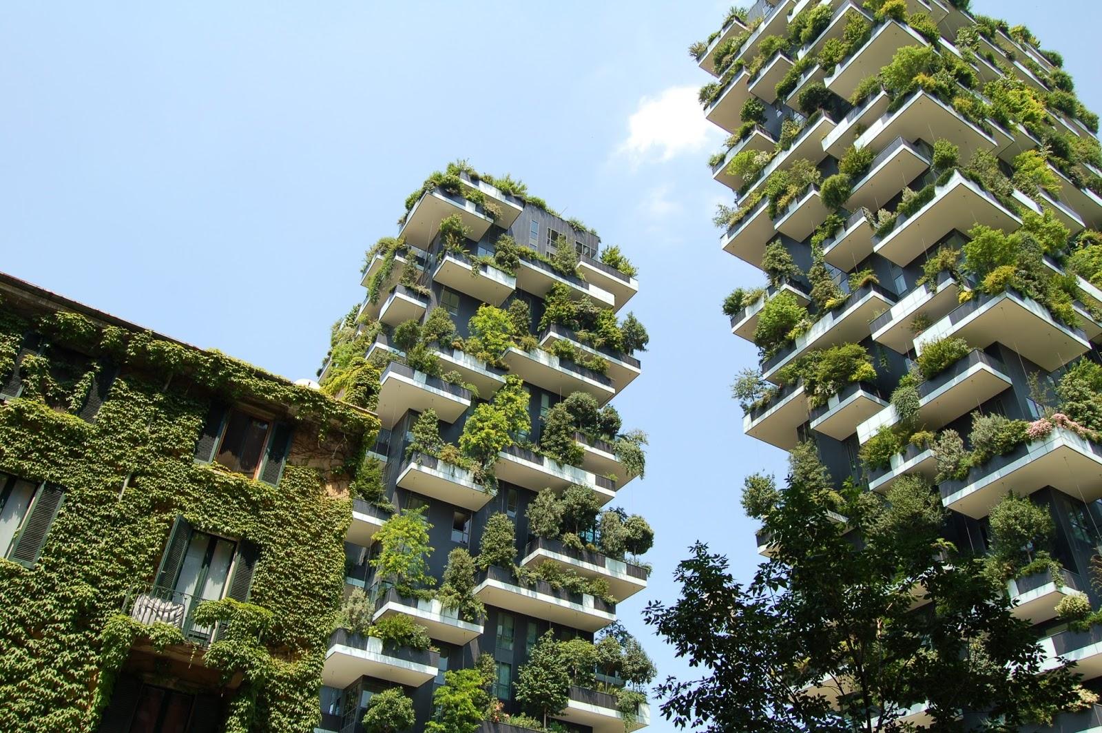 Diseño y plantas