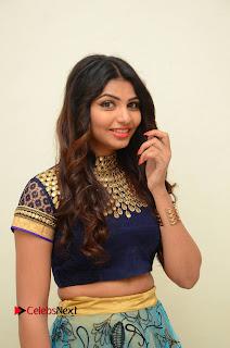 Actress Varsha Pictures in Saree at Dada Puttista Audio Launch  0068