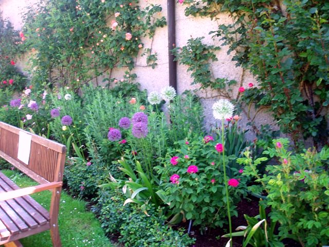 Un jard n con colores for Jardin 7 colores bernal