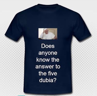Dubia tee-shirt
