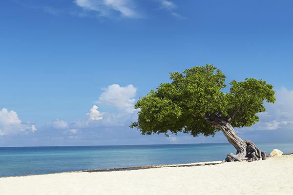 Semana-Santa-familiar-Aruba-isla-feliz
