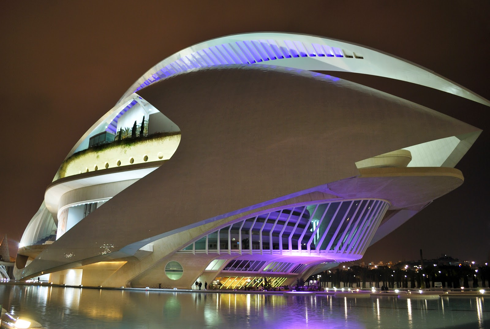 ciudad de las artes y las ciencias valencia city of arts and science nocturno noche night