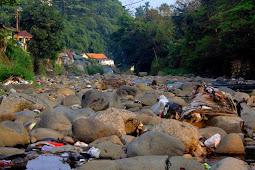 Pemandangan Sungai Ciliwung Yang Kotor Akibat Sampah