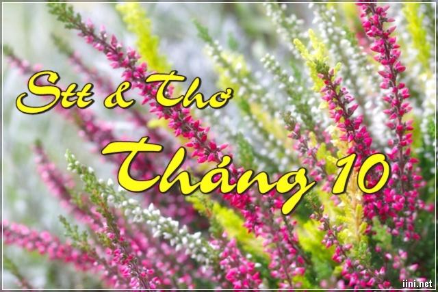 STT và Thơ tháng 10 cực chất, Chào đón 1 Mùa Đông mới lại sang