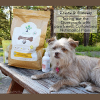 pawtree food giveaway