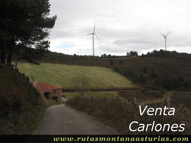 Venta Carlones