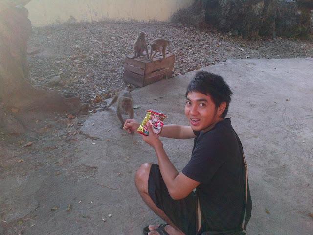 memberi makan monyet di goa monyet kupang NTT