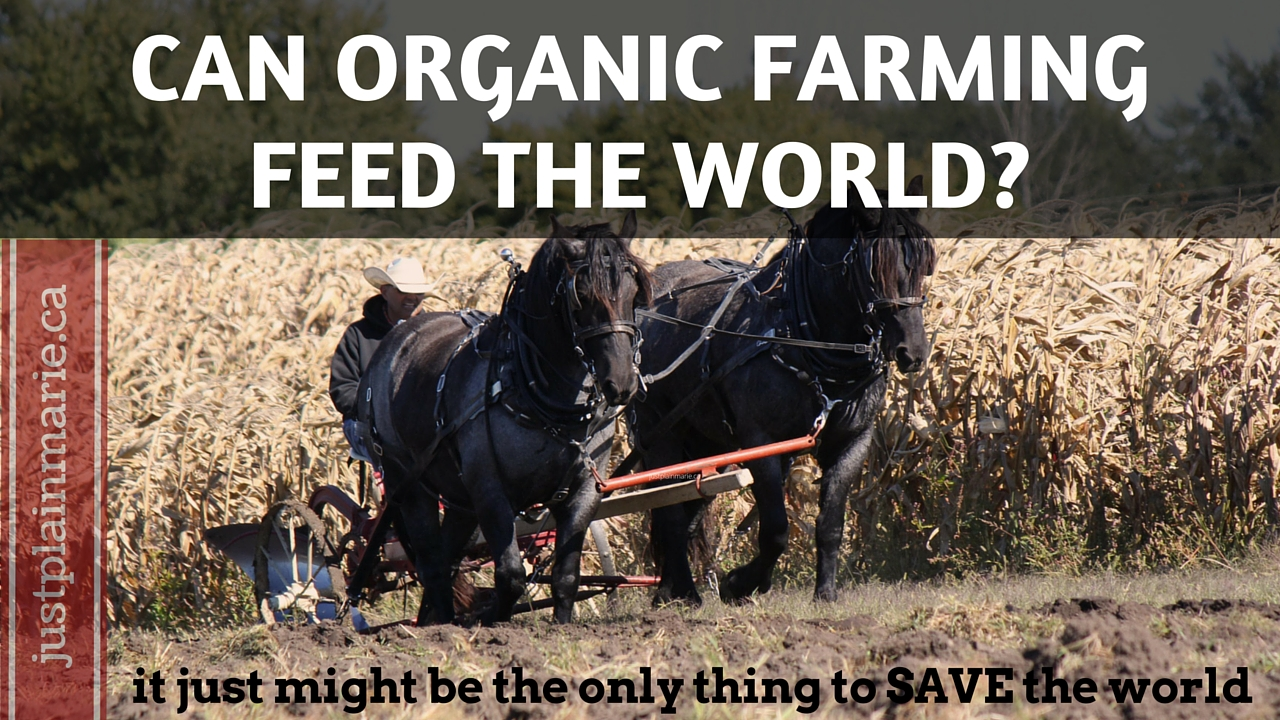 organic farming vs conventional feed the world