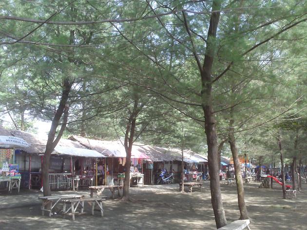 Tempat Wisata Di Pemalang Jawa Tengah Pusat Informasi