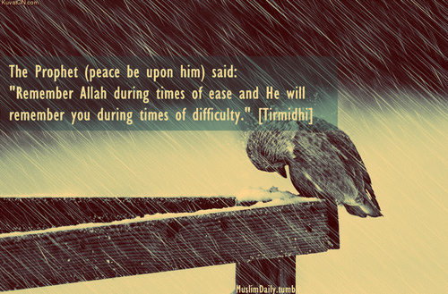 Religion Quote - The Prophet (peace be upon him) said
