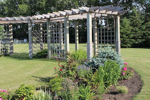 Pergola at Carberry Daylily Gardens