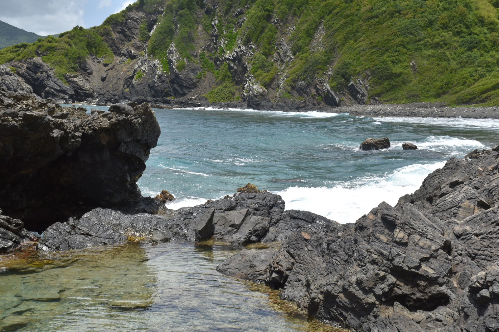 Tide Pool Tours St Croix