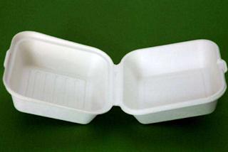 Kemasan Makanan Berbahan Styrofoam