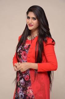 Actress Neha Saxena Stills at Dandu Movie Audio Launch  0025