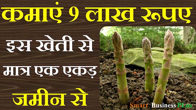 Shatavari ki kheti image,shatavri farming image,shatavari cultivation,shatavar image