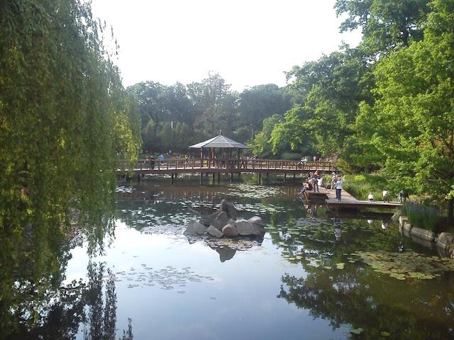 Wrocław - ogród japoński