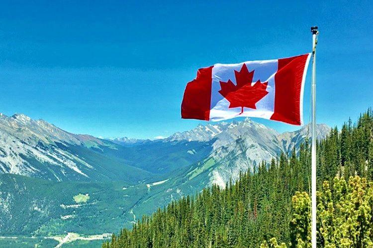 Kanada bayrağı resmi olarak 1965'de kabul edilmiştir, 1966'da da kullanılmaya başlanmıştır.