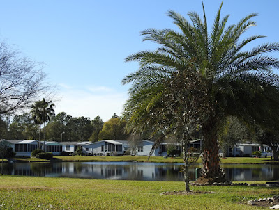 One of the many ponds in the Cypress Lakes 55+ community.