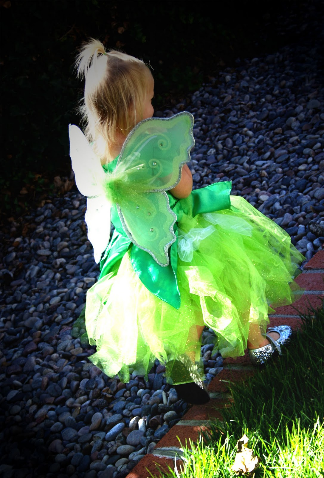 a couple of craft addicts  tinkerbell costume