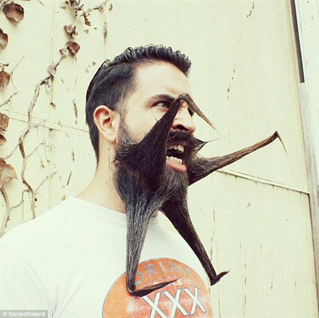 Barba moderna exótica